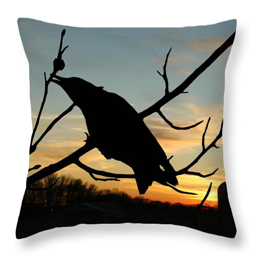 Crow Throw Pillow featuring the photograph Cawcaw Over Sunset Silhouette Art by Lesa Fine