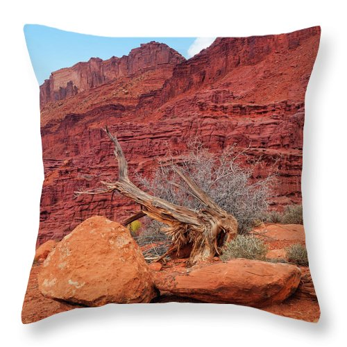 Cedar Tree Throw Pillow featuring the photograph Cedar Wood Tree, Fisher Towers, Moab by Fotomonkee