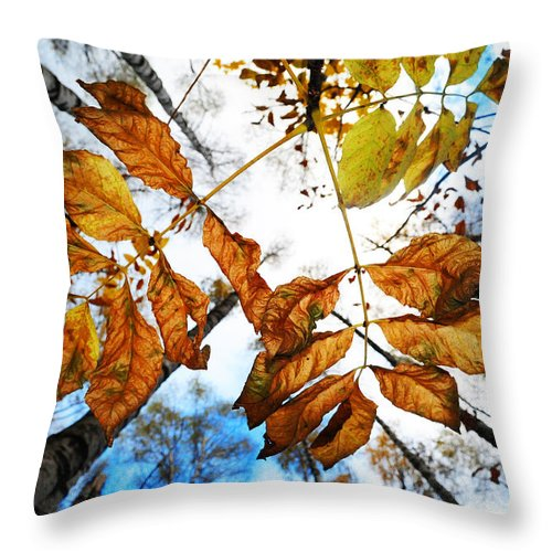 Autumn Throw Pillow featuring the photograph Celebrating Life by Jenny Rainbow