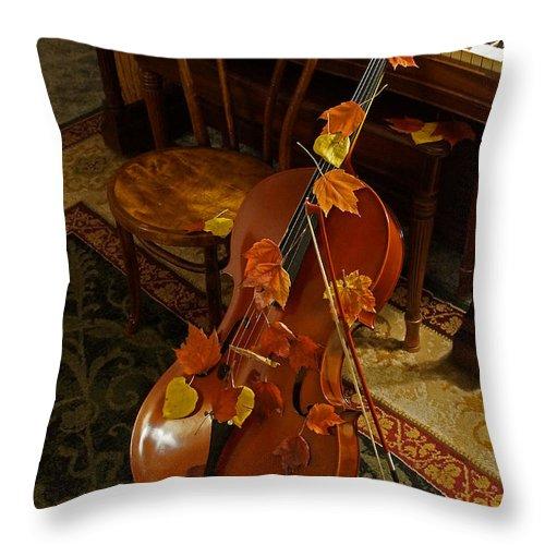 Cello Throw Pillow featuring the photograph Cello Autumn 1 by Mick Anderson