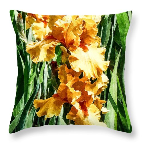 Iris Throw Pillow featuring the photograph Celtic Glory by Susan Savad