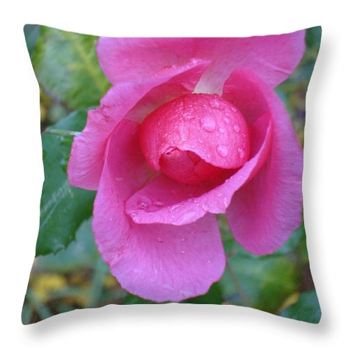 Horticultural Demonstration Gardens Throw Pillow featuring the photograph Center Stage by Joseph Yarbrough