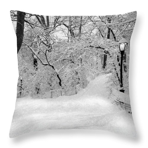 Central Park Throw Pillow featuring the photograph Central Park Dressed Up In White by Susan Candelario