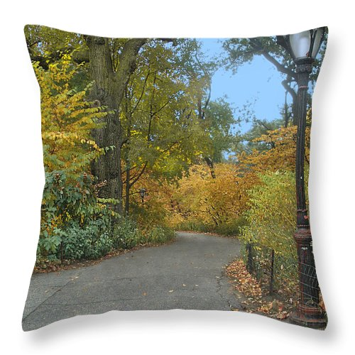 Central Park Throw Pillow featuring the photograph Central Park In Autumn 7 by Muriel Levison Goodwin