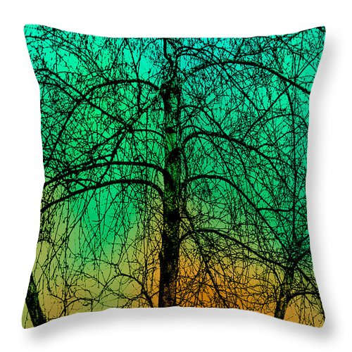 Tree Throw Pillow featuring the photograph Change Of Seasons Number Tw0 by Bob Orsillo