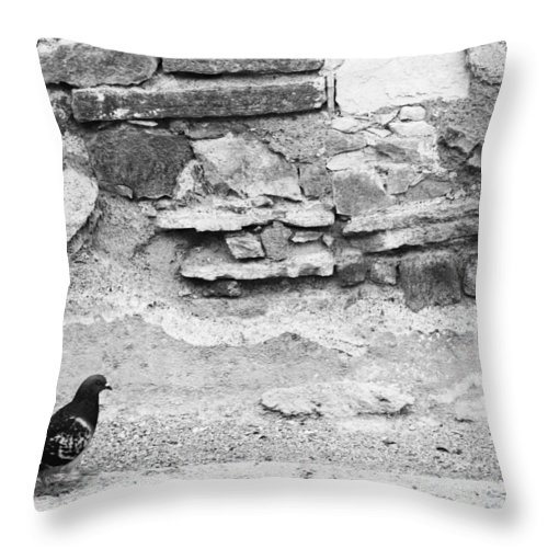 Black And White Throw Pillow featuring the photograph Change The World by The Artist Project