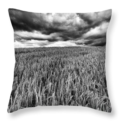 Field Throw Pillow featuring the photograph Chasing The Storm by John Farnan