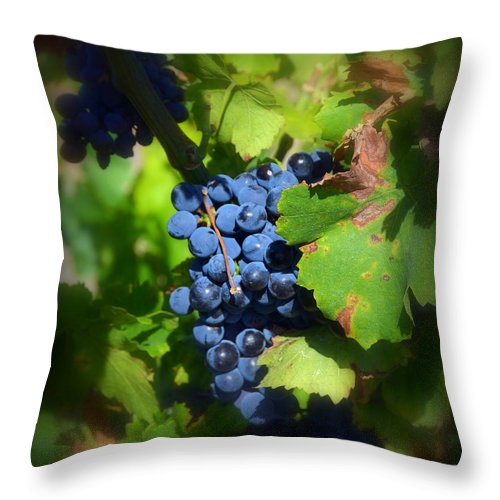 Chateauneuf Throw Pillow featuring the photograph Chateauneuf Du Pape Hidden Treasure by Carla Parris