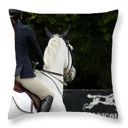 Horse Throw Pillow featuring the photograph Checking Out The Sign by Janice Byer