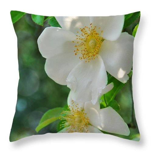 Floral Throw Pillow featuring the photograph Cherokee Roses by Jan Amiss Photography