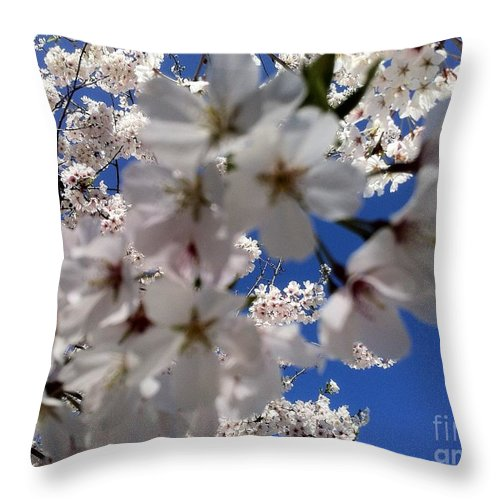 Cherry Blossoms Photography Throw Pillow featuring the painting Cherry Blossoms by Shelia Kempf