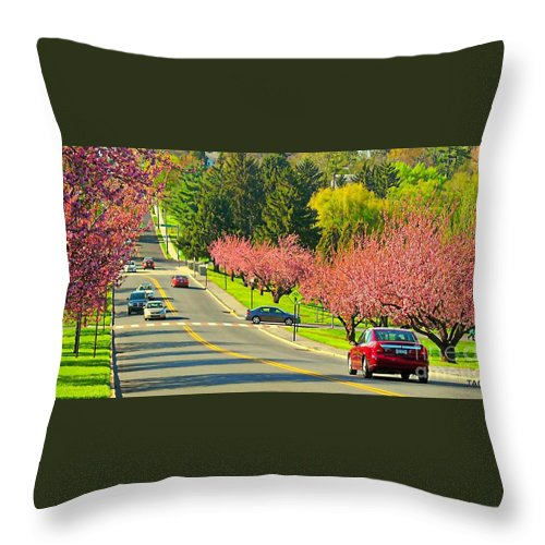 Photo Throw Pillow featuring the photograph Cherry Sundae by Tami Quigley