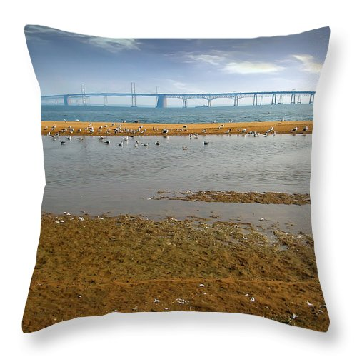 2d Throw Pillow featuring the photograph Chesapeake Bay Bridge by Brian Wallace