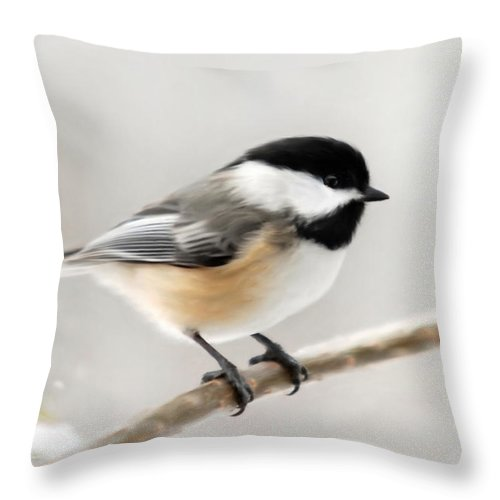 Chickadee Throw Pillow featuring the mixed media Chickadee by Christina Rollo