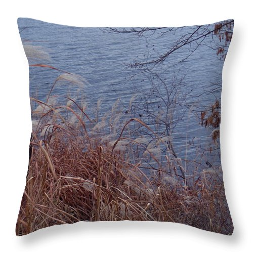 Autumn Throw Pillow featuring the photograph Chill by Wild Thing