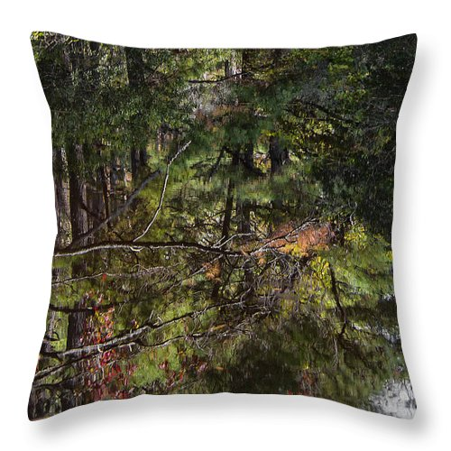 Water Throw Pillow featuring the photograph Chincoteague Reflection by Erika Fawcett
