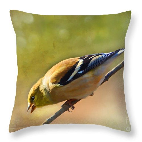 Bird Throw Pillow featuring the photograph Chirping Gold Finch - Painted Effect by Debbie Portwood