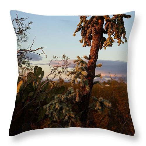 America Throw Pillow featuring the photograph Cholla Cactus View by Kerri Mortenson