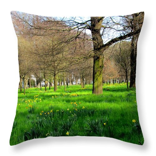 Flower Throw Pillow featuring the photograph Christchurch Gardens by Joyce Woodhouse