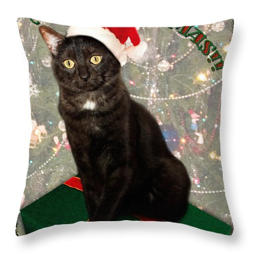 3scape Throw Pillow featuring the photograph Christmas Cat by Adam Romanowicz