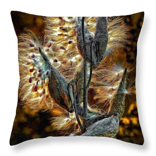 Milkweed Throw Pillow featuring the photograph Christmas Floozy by Steve Harrington