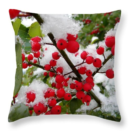 Nature Throw Pillow featuring the digital art Christmas Snow by Matthew Seufer