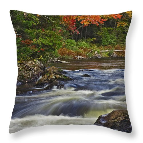 Waterfall Throw Pillow featuring the photograph Chute Croches by Hany J