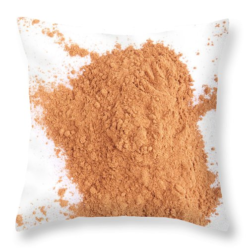 Cinnamon Throw Pillow featuring the photograph Cinnamon Spice by Luis Alvarenga