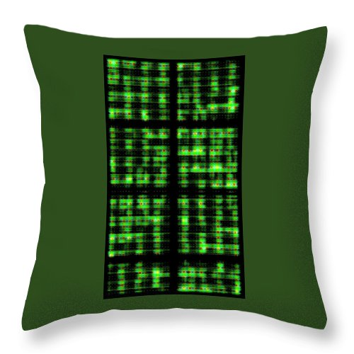 abstract Art fractal Art Abstract abstract Photography geometric Art Geometry Throw Pillow featuring the photograph Circuits by Bill Owen