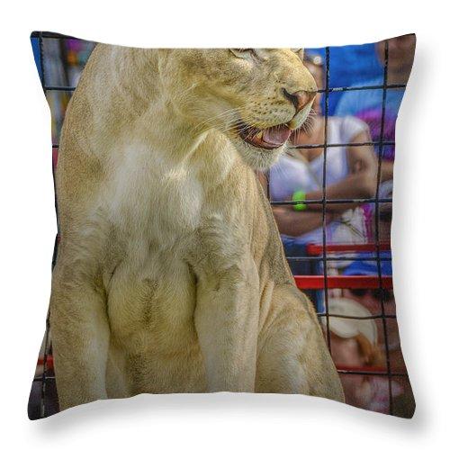 Lion Throw Pillow featuring the photograph Circus Lion by LeeAnn McLaneGoetz McLaneGoetzStudioLLCcom