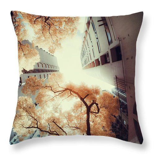 Tranquility Throw Pillow featuring the photograph City In Harmony With Nature by D3sign