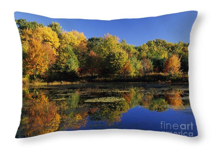 Fall Throw Pillow featuring the photograph Clark Pond - Auburn New Hampshire by Erin Paul Donovan