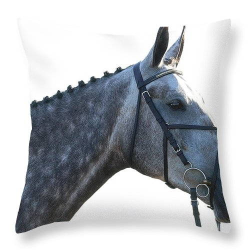 Horse Throw Pillow featuring the photograph Classic Greyed by Alice Gipson