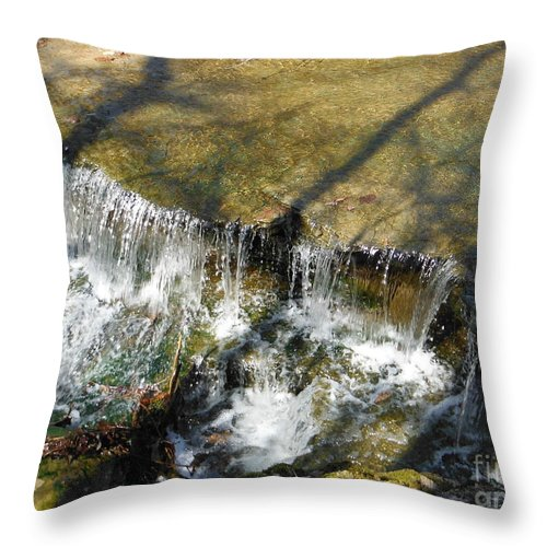Clear Beautiful Water Series Throw Pillow featuring the photograph Clear Beautiful Water Series 2 by Paddy Shaffer