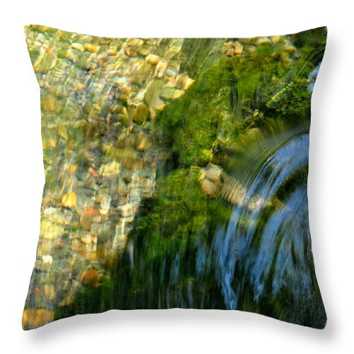 Water Throw Pillow featuring the photograph Clearwater Falls Series 11 by Teri Schuster
