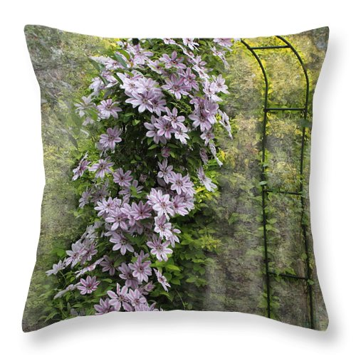 Clematis Throw Pillow featuring the photograph Climbing Clematis by Angie Vogel