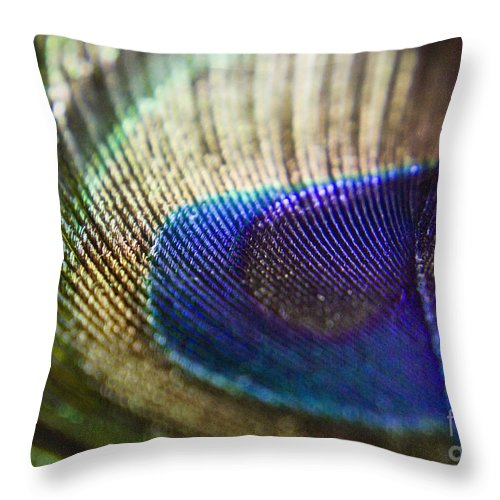 Peacock Throw Pillow featuring the photograph Close Feather by Andrea Goodrich