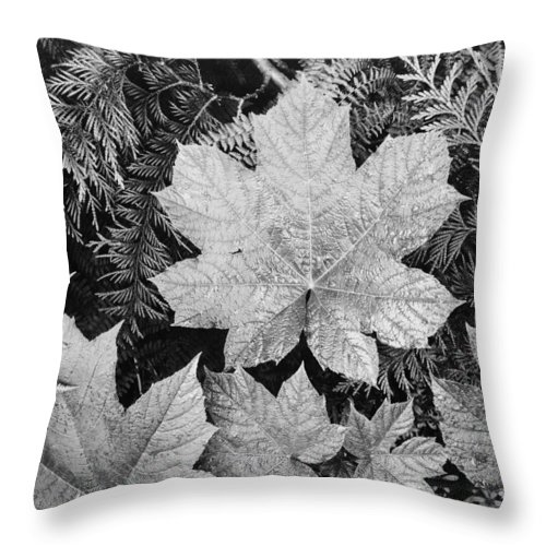 Close-up Of Leaves Throw Pillow featuring the digital art Close Up Of Leaves by Ansel Adams