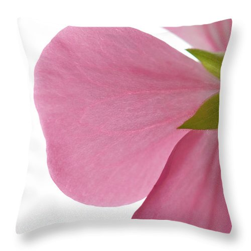 White Background Throw Pillow featuring the photograph Close-up Of Pink Geranium Flower Petals by Daryl Solomon