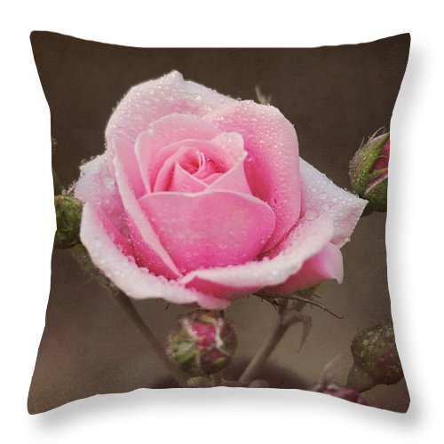 Romantic Throw Pillow featuring the photograph Clothed In Natures Jewels by Jai Johnson