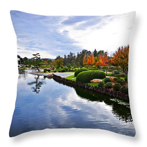 Water Throw Pillow featuring the photograph Cloudy Garden Reflections by Lynn Bauer
