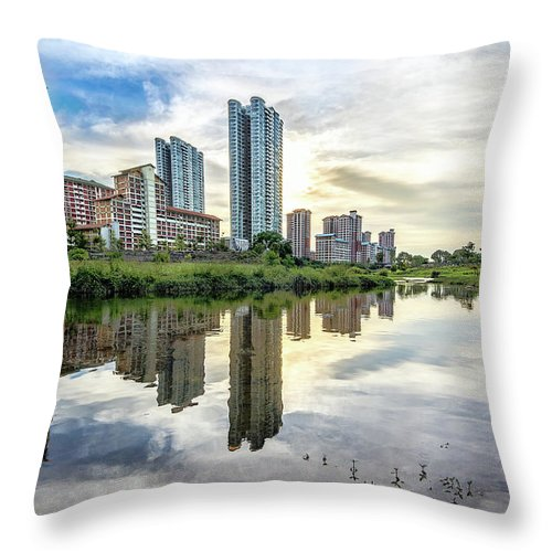 Standing Water Throw Pillow featuring the photograph Clover Reflections by Tia Photography