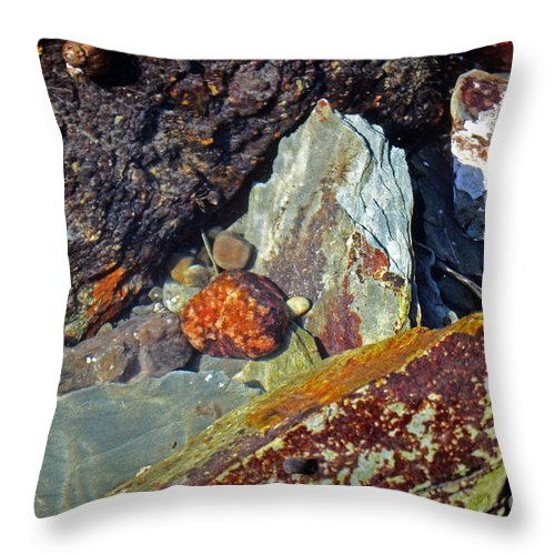 Rock Throw Pillow featuring the photograph Coastal Rock Garden by Kevin Fortier