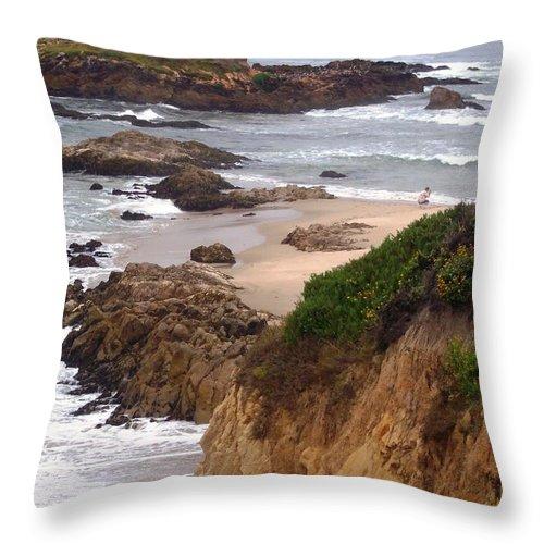 Coast Throw Pillow featuring the photograph Coastal Scene 8 by Pharris Art