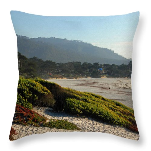 Coast Throw Pillow featuring the photograph Coastal View - Ice Plant II by Suzanne Gaff