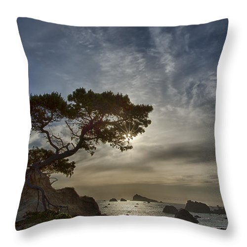 Tree Throw Pillow featuring the photograph Coastal Vision by Alan Kepler