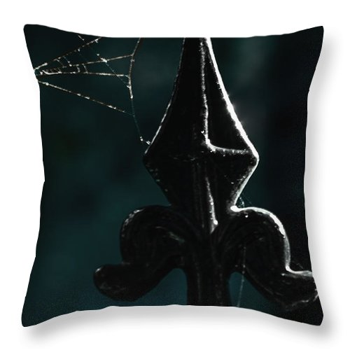 Fence Throw Pillow featuring the photograph Cobwebs by Margie Hurwich