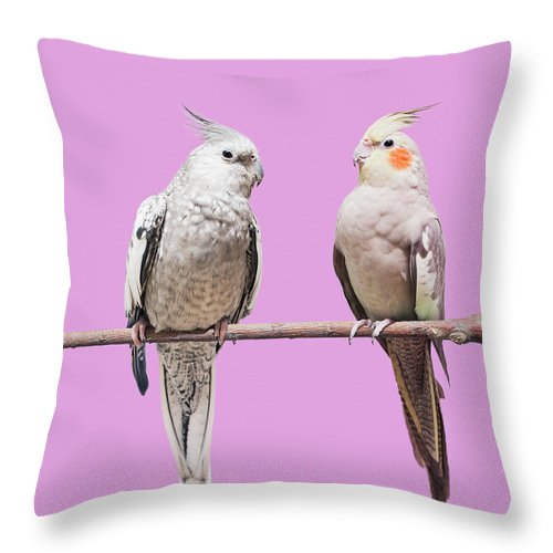 Pets Throw Pillow featuring the photograph Cockatiel Parrots by Larry Washburn