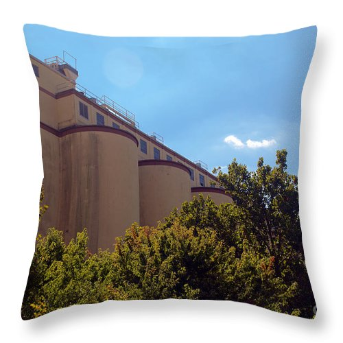 Bean Throw Pillow featuring the photograph Cocoa Bean Storage Elevators by Mark Dodd