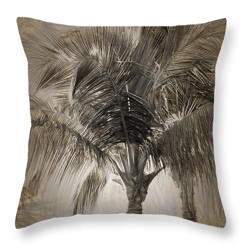 Palm Throw Pillow featuring the photograph Coconut Palm Tree by Peter Hogg